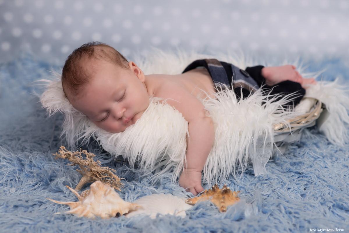 Antoś - sesja niemowlęca i świąteczna  graf-art.eu   fot Małgorzata Barul